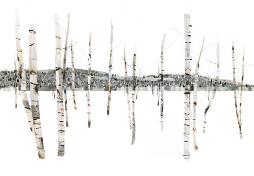 watercolour painting of birch bark with hills in the background detailed view