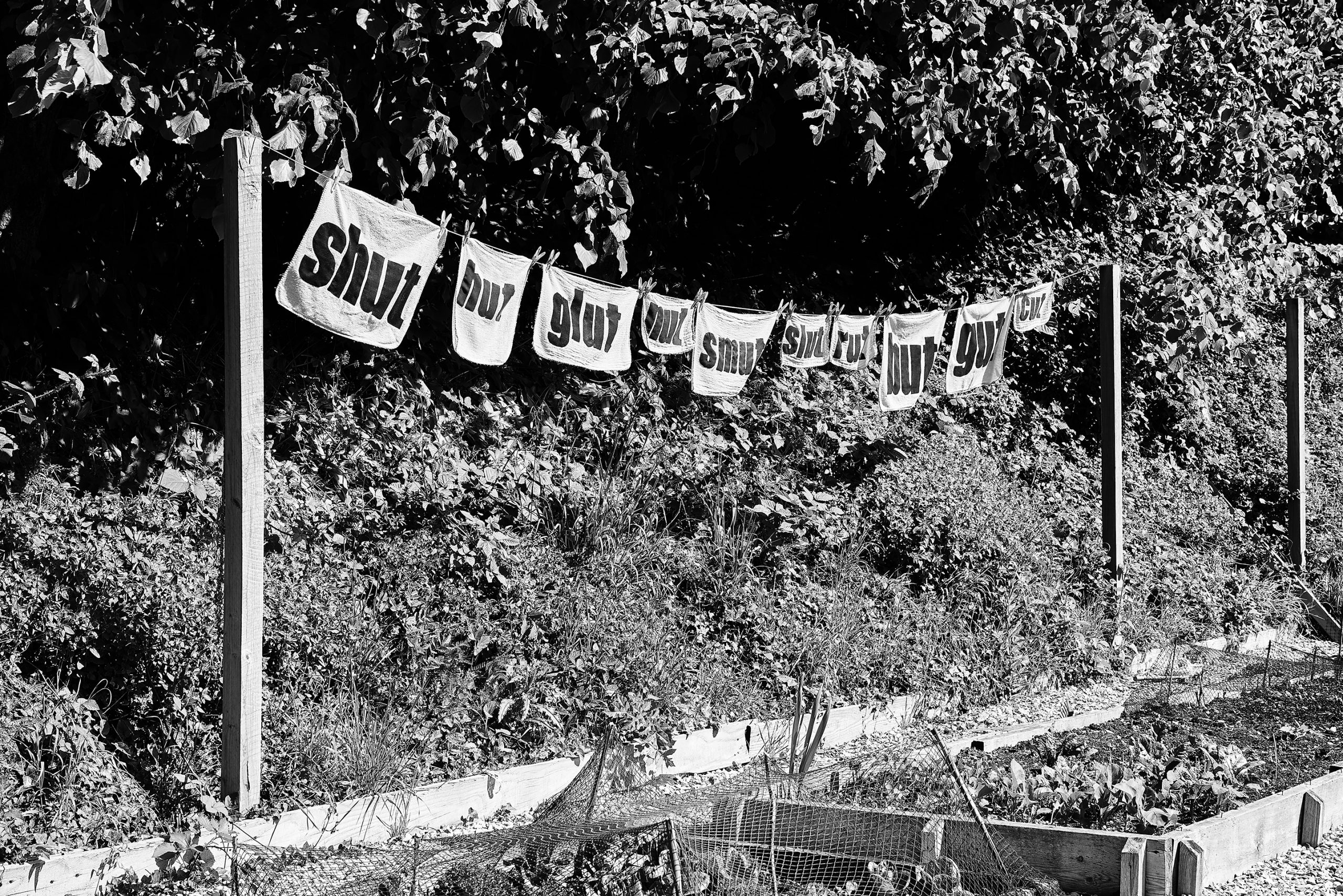 vegetable patch with banners reading