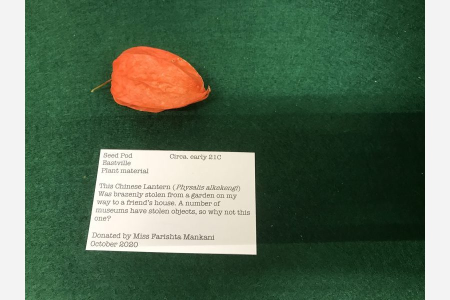 Red seed pod on a green background with label reading 'This Chinese Lantern (Physalis alkekengl) was brazenly stolen from a garden on my way to a friend's house. A number of museums have stolen objects, so why not this one? Donated by Miss Farishta Mankani October 2020'