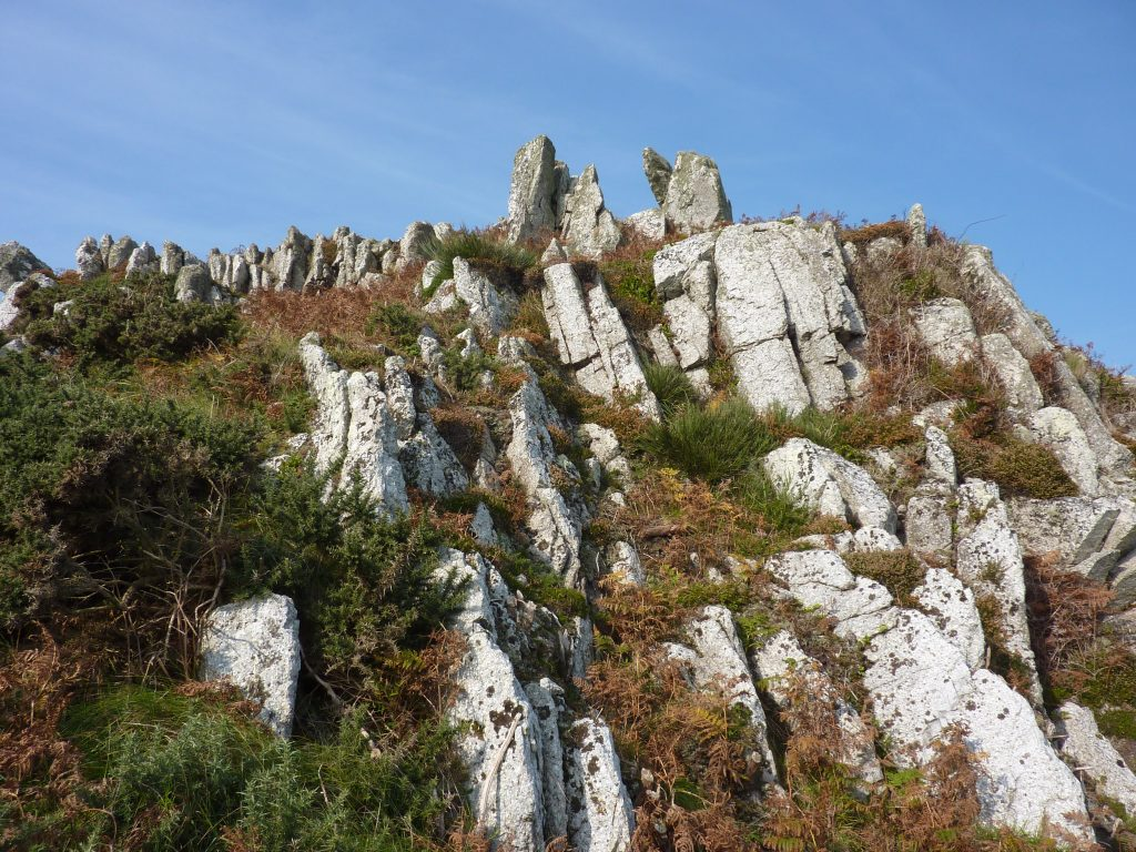 Picture of a rocky outcrop, plant life and sky